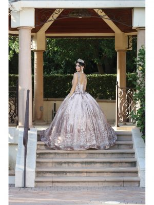 Quinceanera Dress 2020